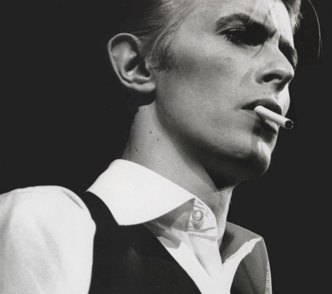 Two Bowie