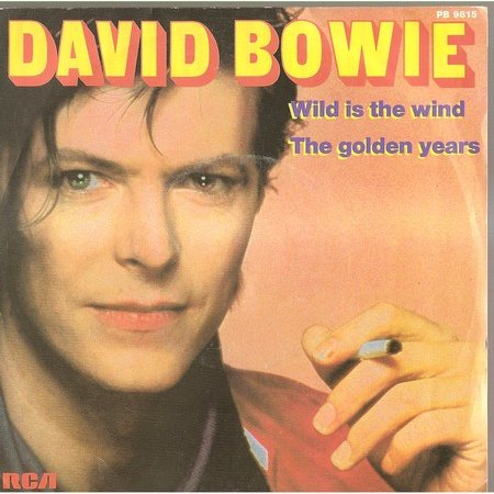 Wild is the Wind David Bowie