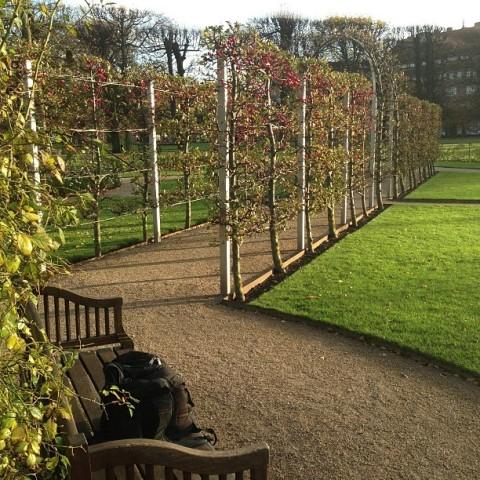 Rosenborg Palace Garden