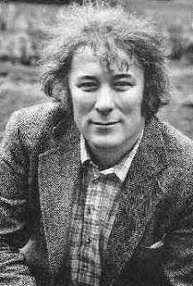 seamus heaney irish poet