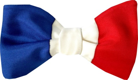 french_flag_bow_tie