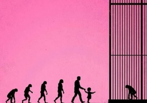 evolution-man-ape-cage