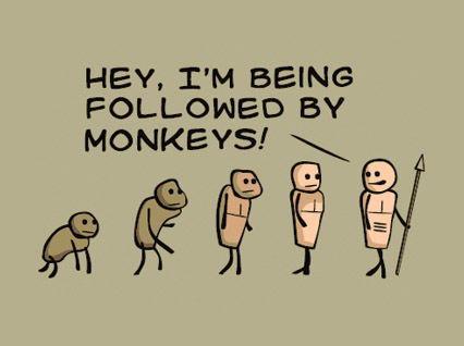evolution monkeys