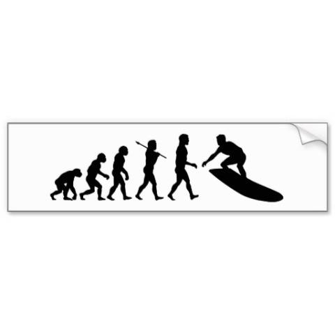 surfer_surfing_evolution_surf_bumper_sticker