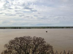 rio parana rosario argentina