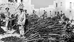 Surrendered weapons of the Italian garrison Lampedusa