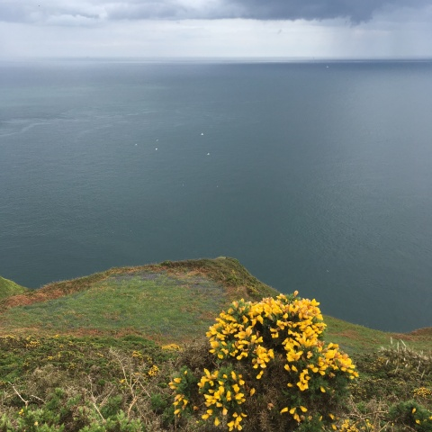 howth head dublin