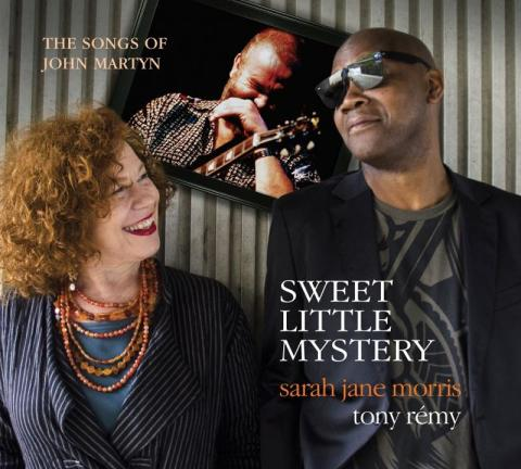 Sweet Little Mystery sarah jane morris LP album record