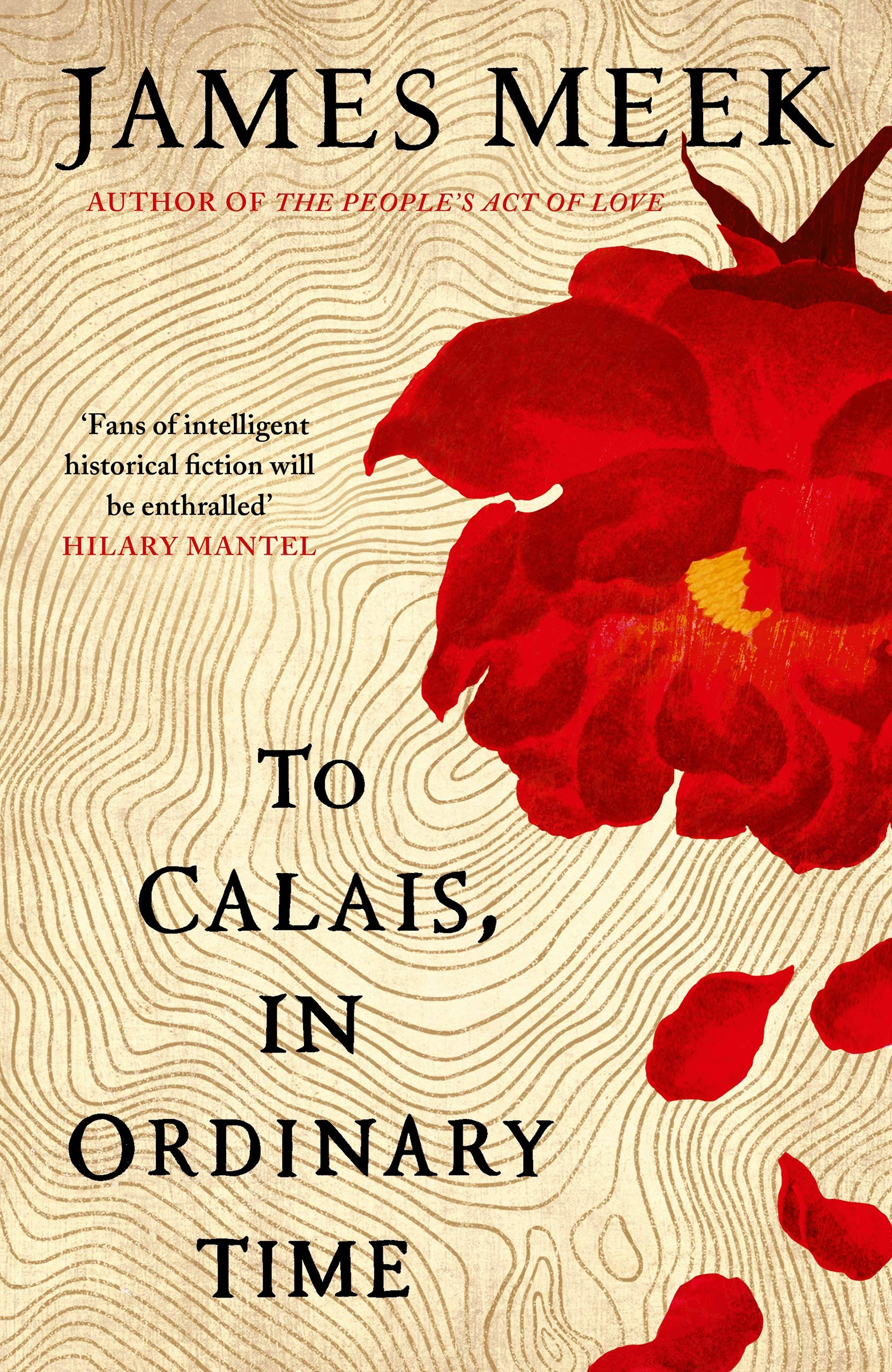 To Calais, in ordinary time – James Meek book novel cover design