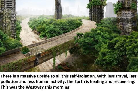 earth healing meme westway